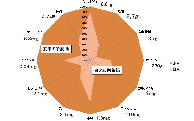 玄米の栄養素